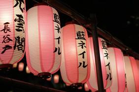CARNET DE ROUTE TDM ZD - #6 JAPON