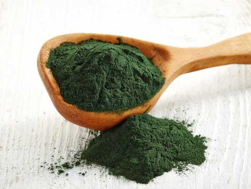 Spirulina: A Superfood For Dogs
