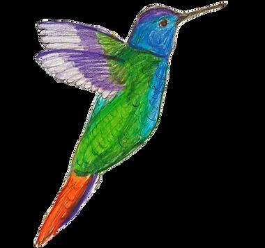 adeeshummingbird.png