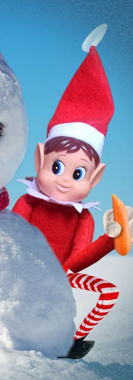 snowman carrot.jpg