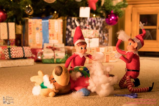 Toy stuffing.jpg