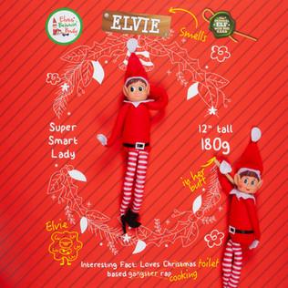 Elf Announcement_ELVIE_SQUARE.jpg