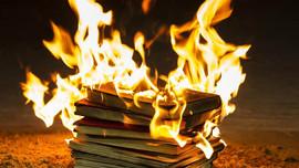 Burning Books &  Revolting Animals  