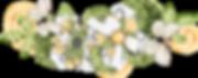 kissclipart-scrapbooking-clipart-digital
