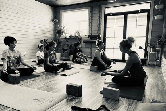 Studio Yoga Class - Lacey Yoga Clas