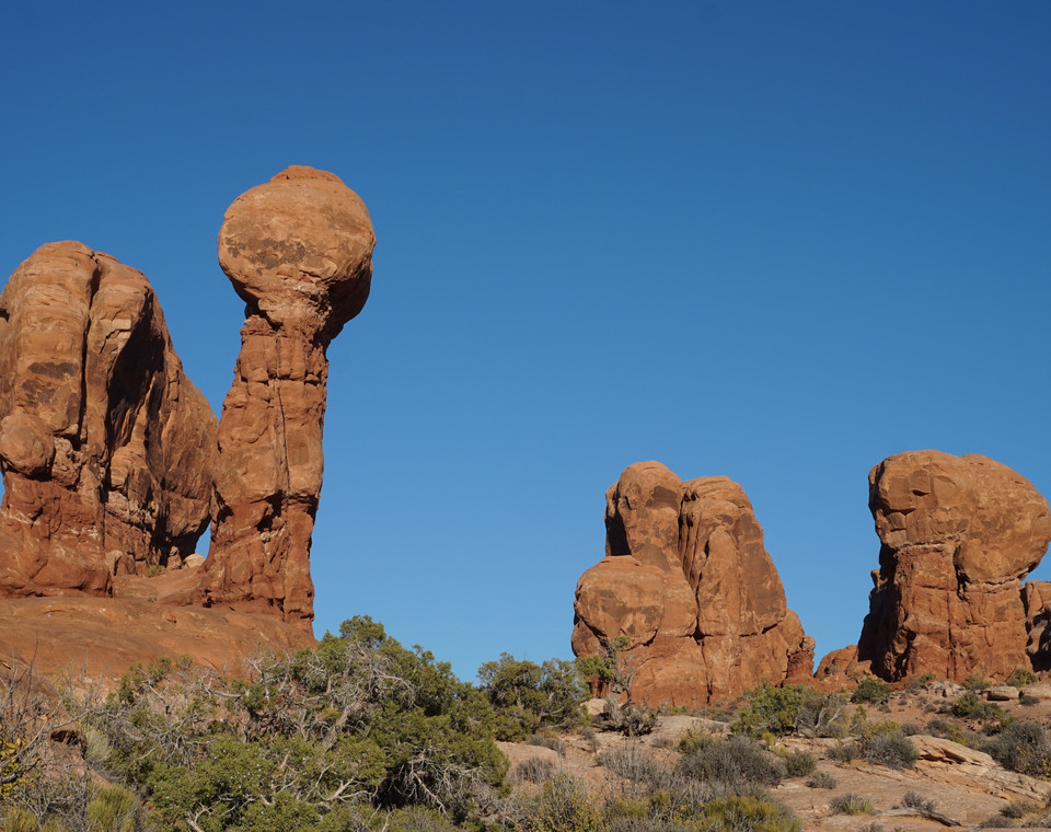 Elephant butte (Arches).JPG