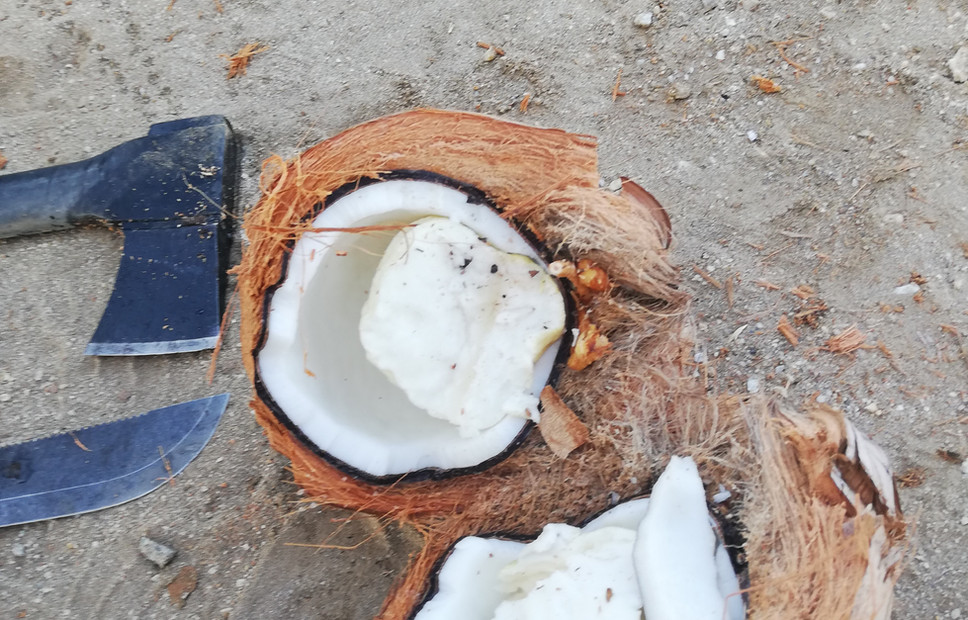 Real coco....jpg