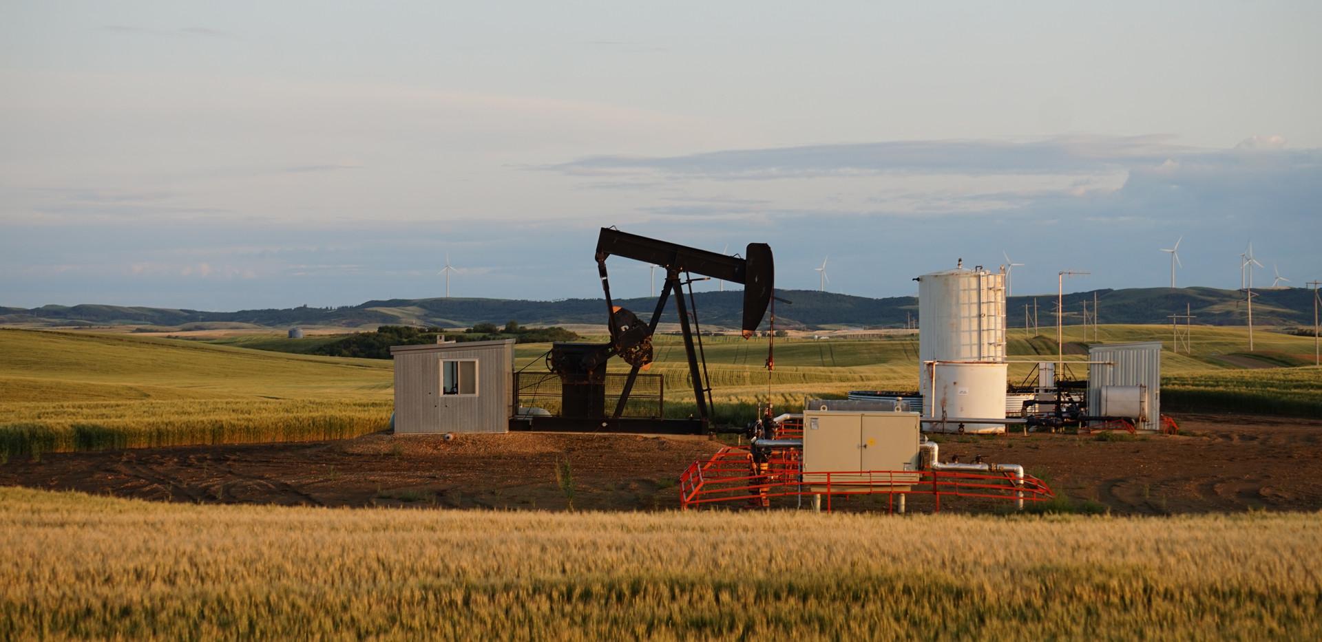 Champ_pétrole_Calgary.JPG