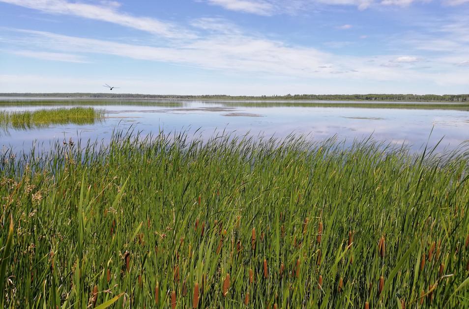 Lac Manitoba.jpg