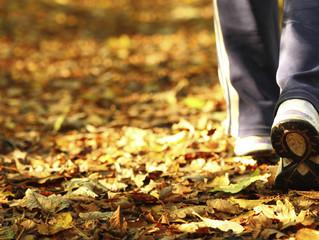 Quins són els beneficis de caminar?