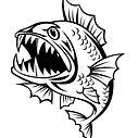 BadfishWise.jpg