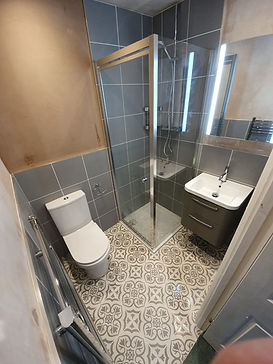 Wet Room with Showe, Toilet and Sink