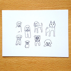 Some Weird Dogs