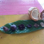 Kakao ve všech formách zpracování