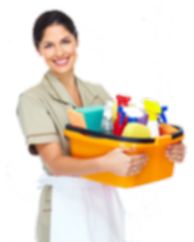 kisspng-cleaner-maid-service-cleaning-do
