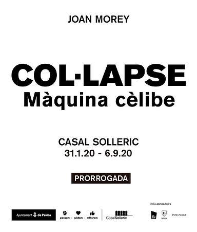 flyer colapse.jpg