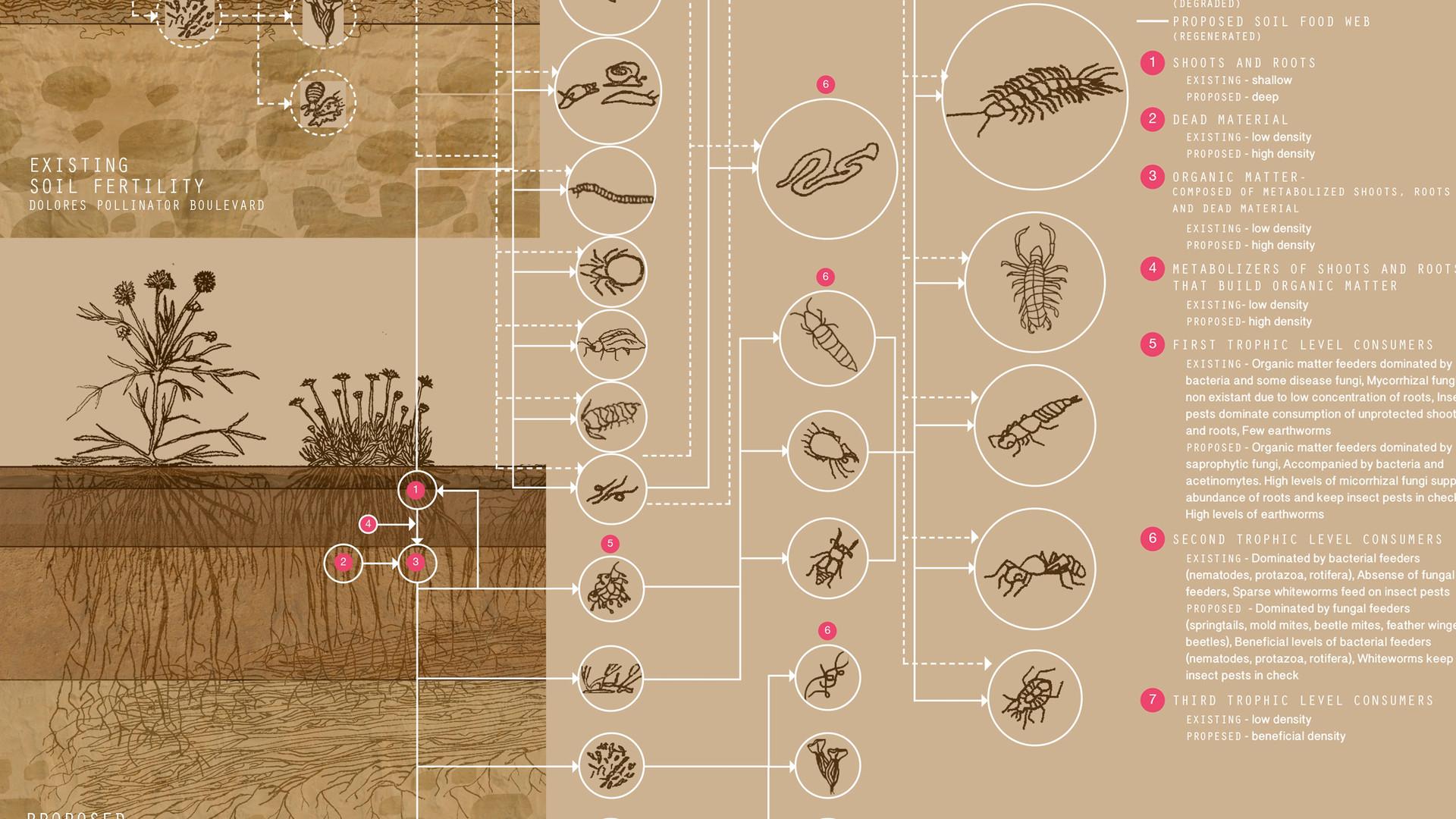 14 Soil Fertility FLAT.jpg