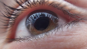 Antibiotics may effect your eyes as well as your gut.