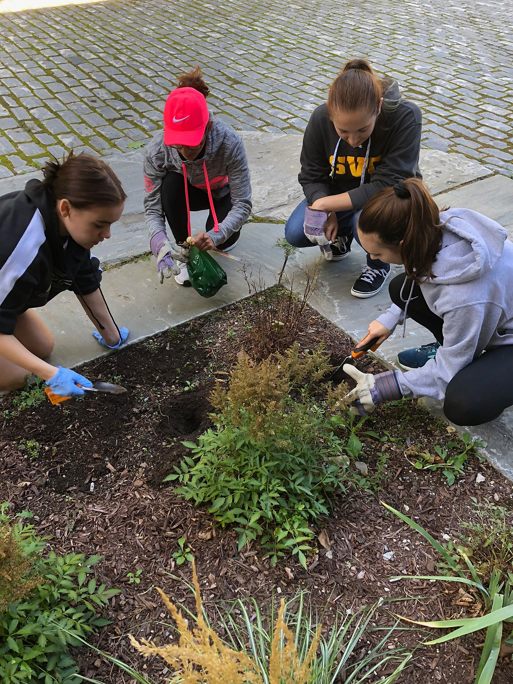 Volunteering by planting flowers and plants