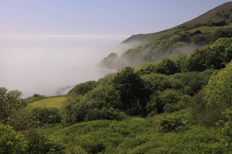 a-morning-sea-mist-rolls-into-the-coast-