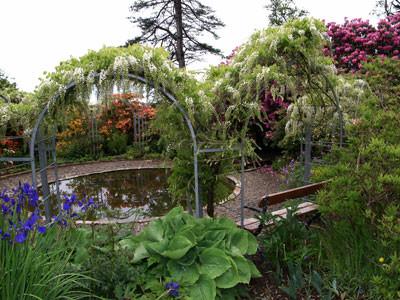 Romantic-garden!.jpg