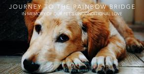 Journey to the Rainbow Bridge - A Hypnotic Meditation by Paul Barnes, C.Ht.