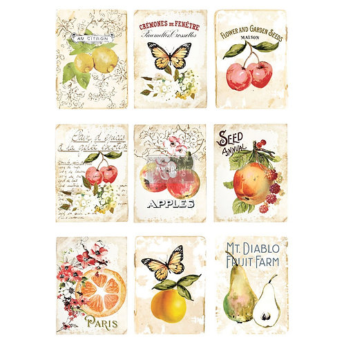 SWEET APRICOT- REDESIGN DÉCOR TRANSFERS® –  22″X 30″