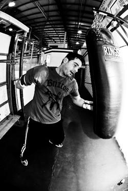 Broomall Boxer