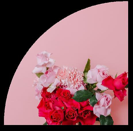 Rosepose.png