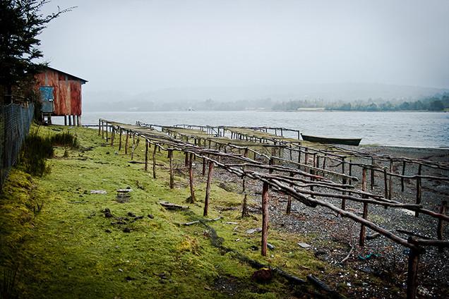 Chiloe Island | Chile