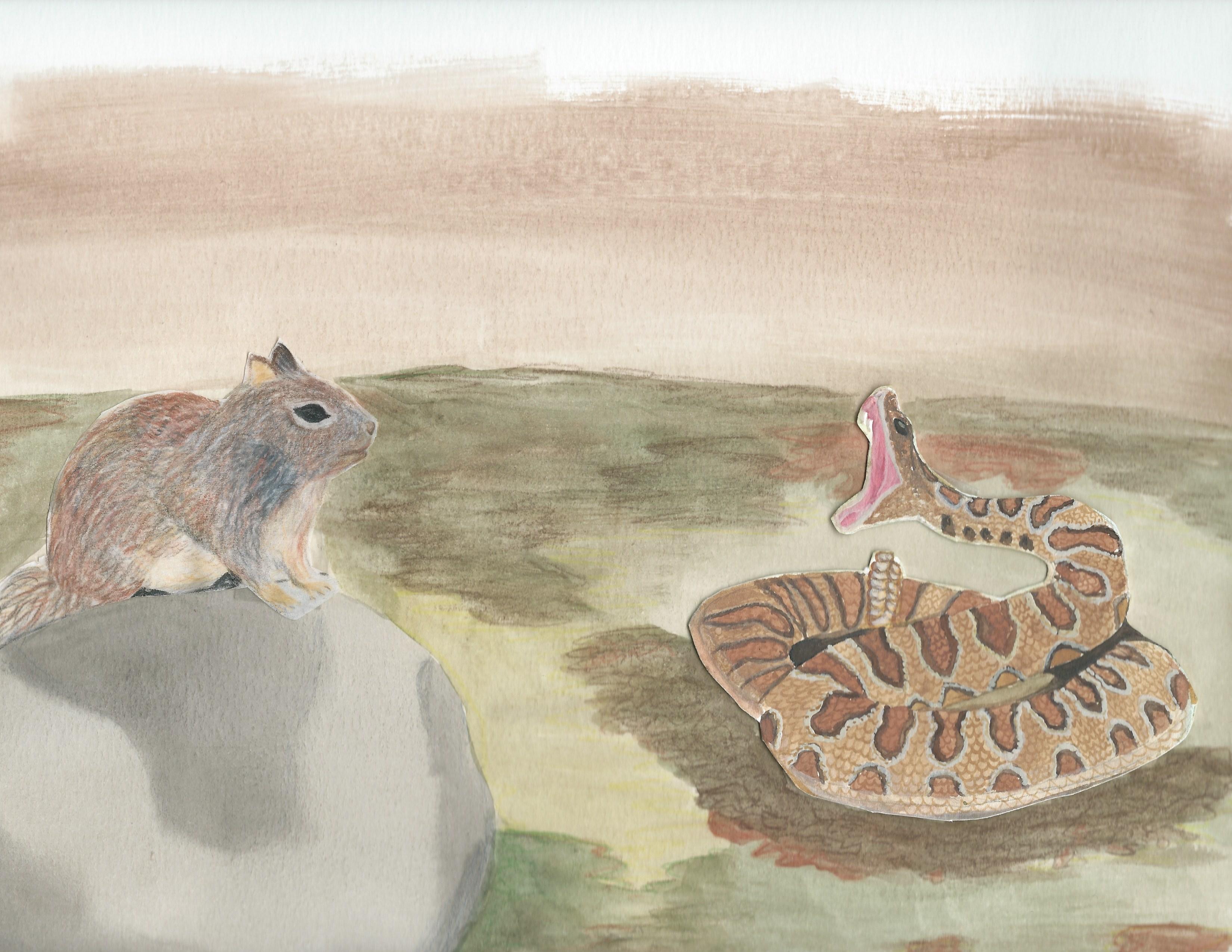 rattlesnake squirrel cover