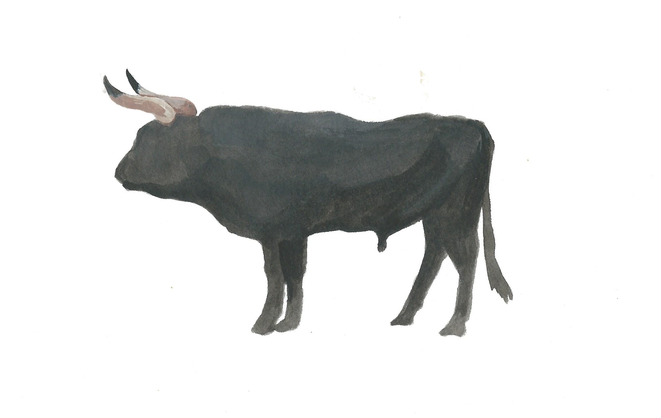 ancient bovine