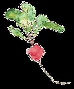 organic event food banchory