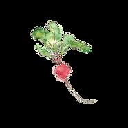 vegan food menu banchory