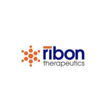 Peregrine Ventures invests in Ribon Therapeutics