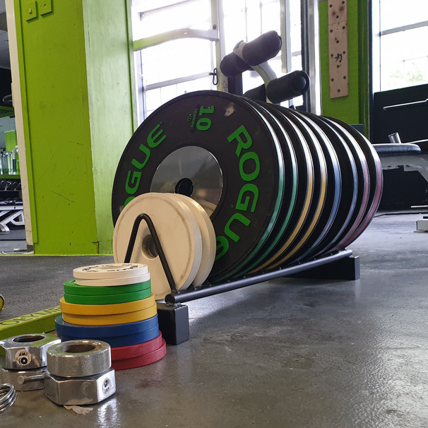 Rogue Weightlifting Bumpers