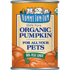 Canned Organic Pumpkin
