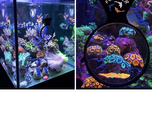 Flipper DeepSee Magnifying Viewer
