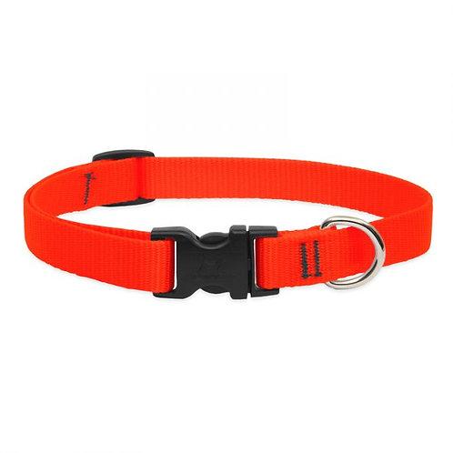 Lupine Orange Collar