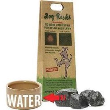 Dog Rocks - no more yellow grass!