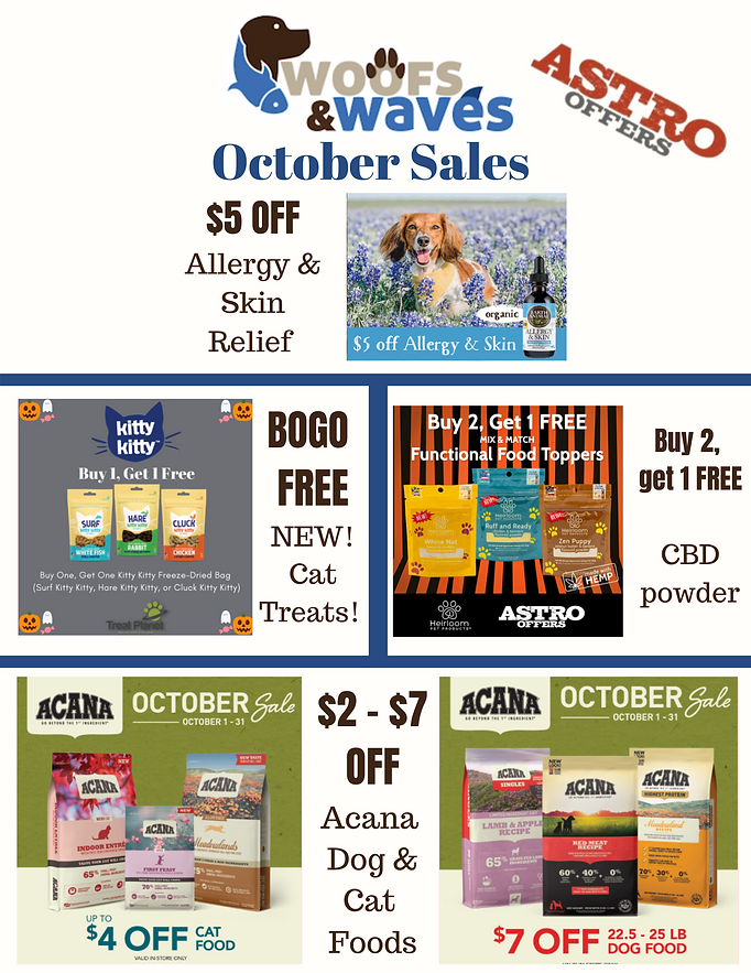 Monthly sales-3.png