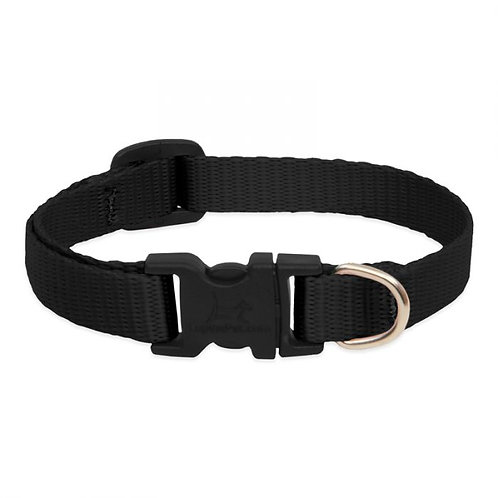 Lupine Black Collar