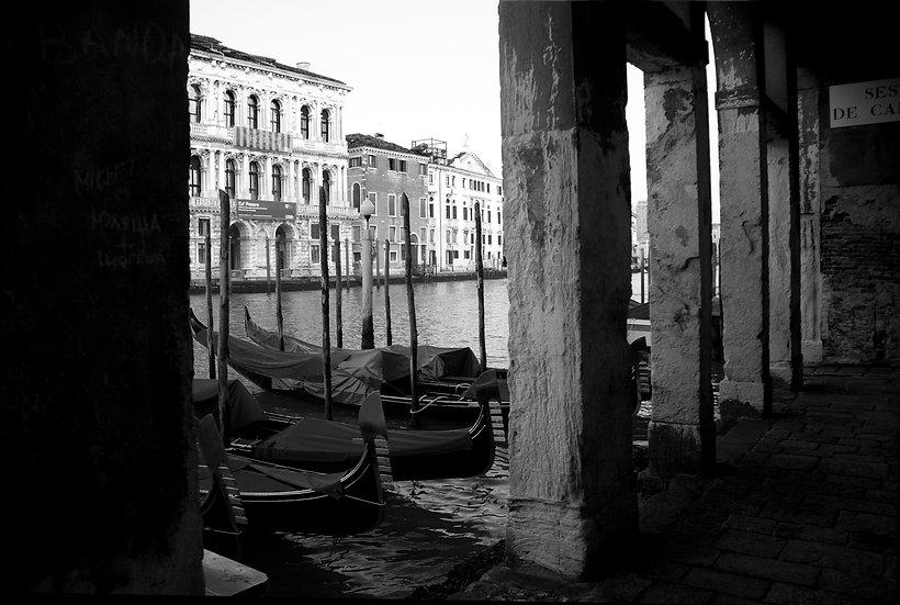 Venetian Morning