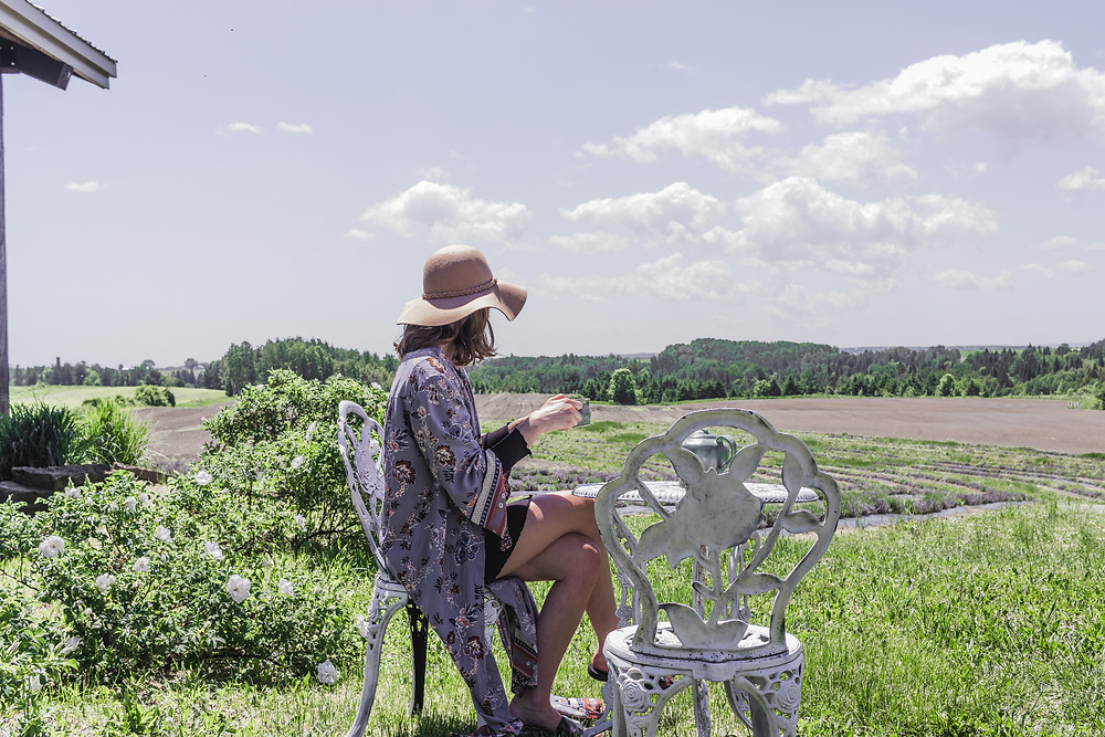 #pique-nique #passionlavande #st-sévère #soirée #summer #jardinsdelavande