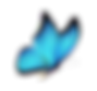 1FBflip butterfly flip570560110.png