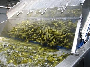 lavado verduras ozono