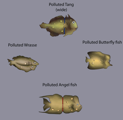Polluted Fish Reference