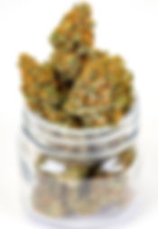 Pot Marijuana Rapid Testing