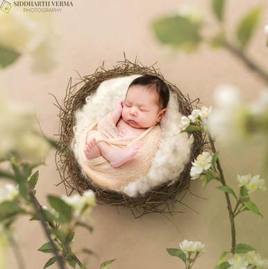 Best Newborn photographer in Delhi NCR.jpg