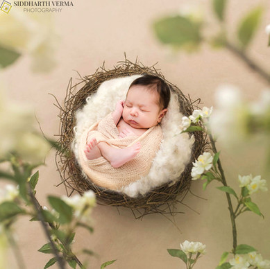 Best Newborn photographer in Delhi NCR.jpg